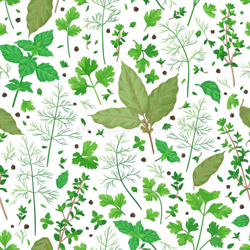 Teste padrão com ervas do tempero ilustração royalty free
