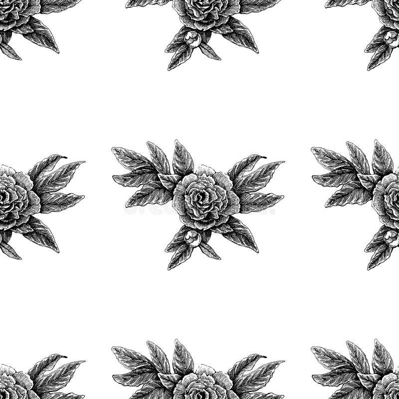 Teste padrão cor-de-rosa da peônia sem emenda da flor do vetor com flores e folhas do esboço Imagem desenhada mão ilustração royalty free