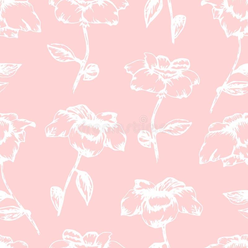 Teste padrão cor-de-rosa macio com as rosas brancas do esboço ilustração royalty free