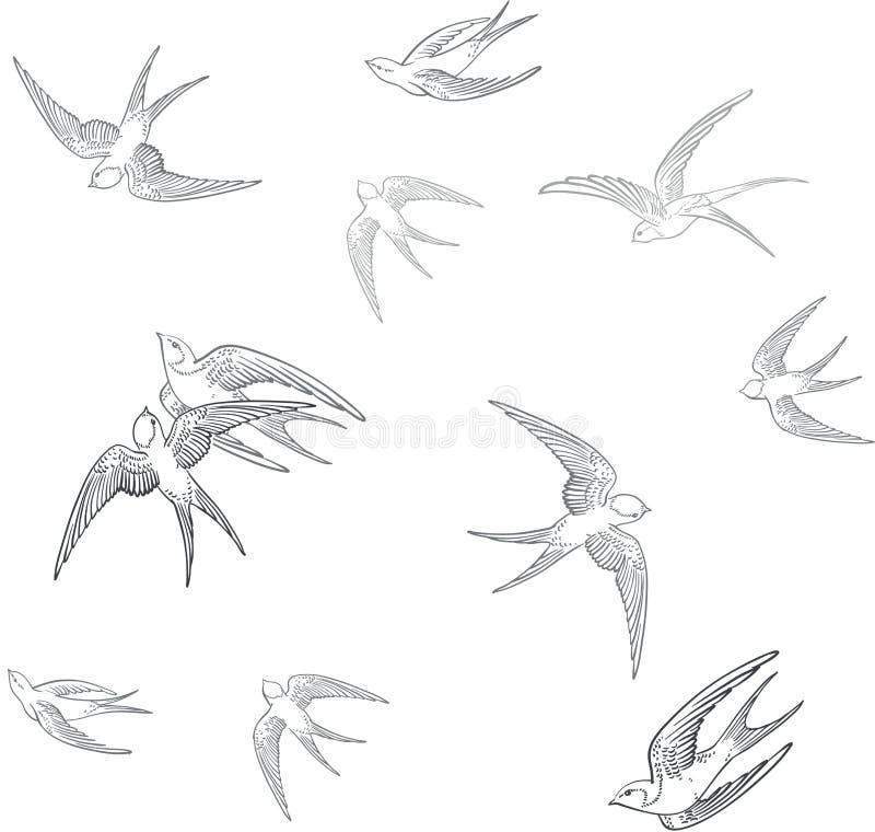 Teste padrão da andorinha para imprimir em uma tela ilustração stock