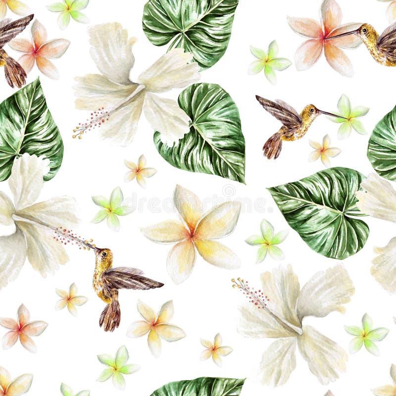 Teste padrão da aquarela com flores e o colibri tropicais do pássaro ilustração royalty free