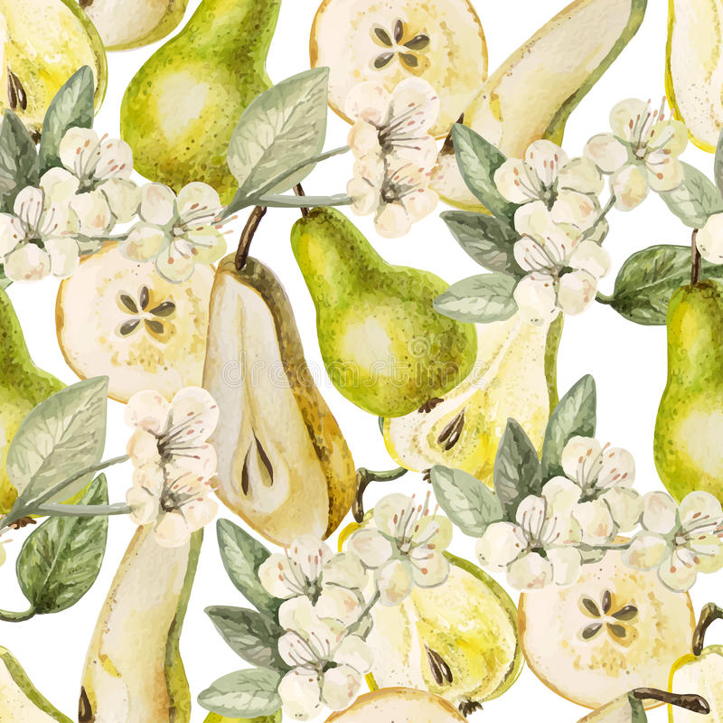 Teste padrão da aquarela com peras e flores foto de stock