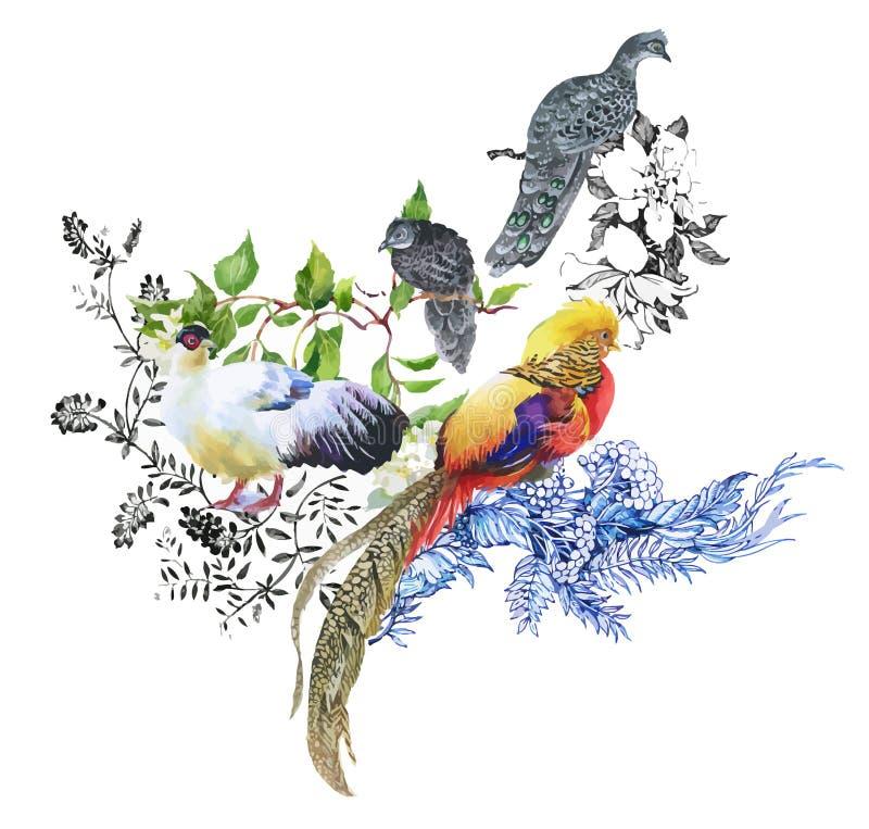 Teste padrão da aquarela das flores do jardim e dos pássaros do faisão ilustração stock