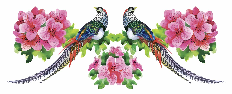Teste padrão da aquarela das flores do jardim e dos pássaros do faisão ilustração royalty free