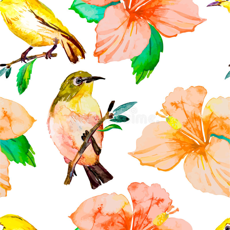 Teste padrão da aquarela Pássaros e flores tropicais ilustração do vetor