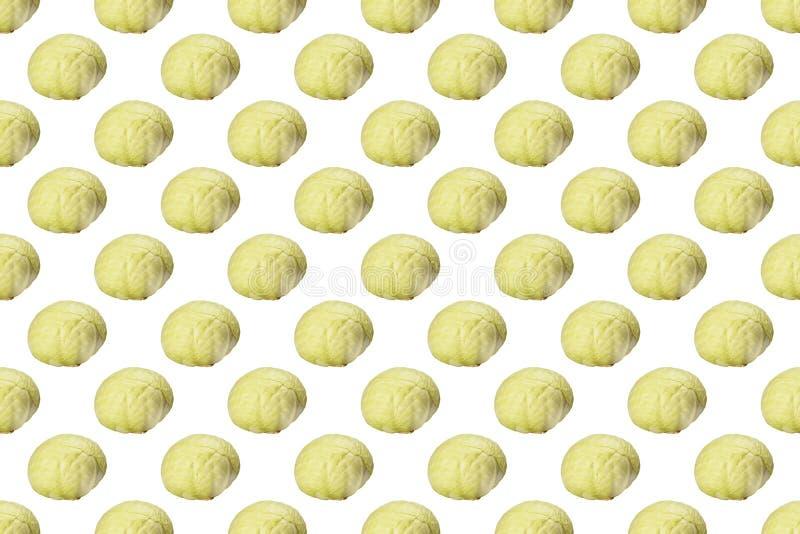 Teste padrão da couve verde isolado no fundo branco foto de stock royalty free