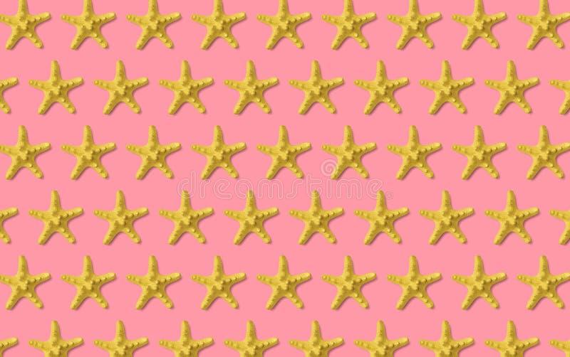 Teste padrão da estrela do mar no rosa Fundo minimalistic do verão Vista superior, configura??o lisa fotos de stock
