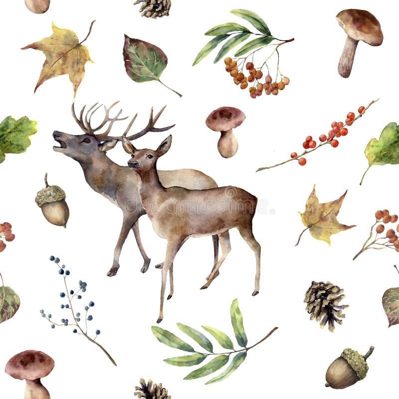 Teste padrão da floresta do outono da aquarela Quadro floral pintado à mão com cervos, Rowan, cogumelos, bagas, bolota, cone do p ilustração royalty free