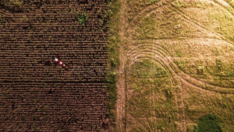Teste padrão da fotografia aérea na estação diferente da colheita do sumário da exploração agrícola do milho de campo da terra imagens de stock royalty free