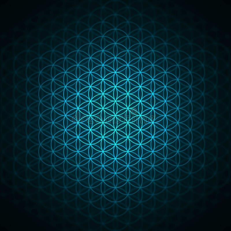 teste padrão da gênese - a flor do azul da vida ilustração stock