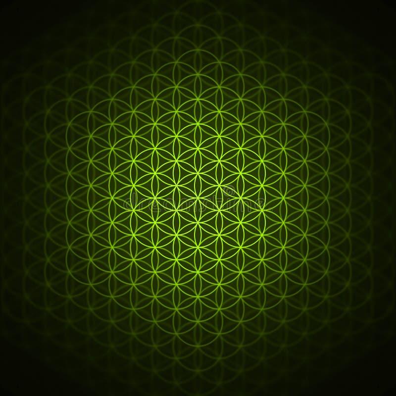 Teste padrão da gênese - a flor do verde da vida ilustração stock