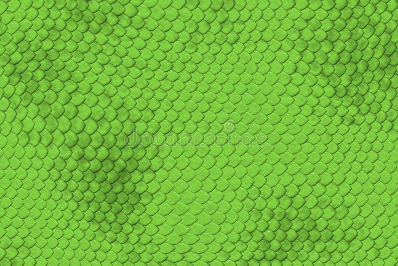 Teste padrão da pele do lagarto fotografia de stock