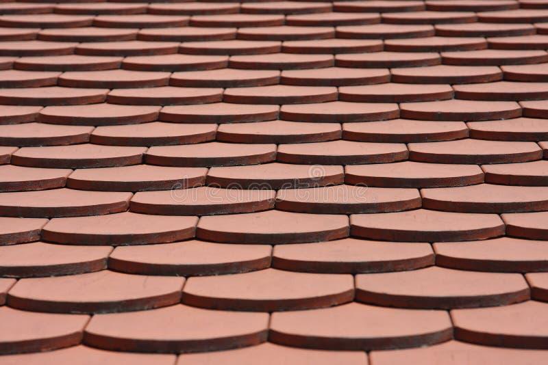 Teste padrão da telha de telhado fotografia de stock royalty free