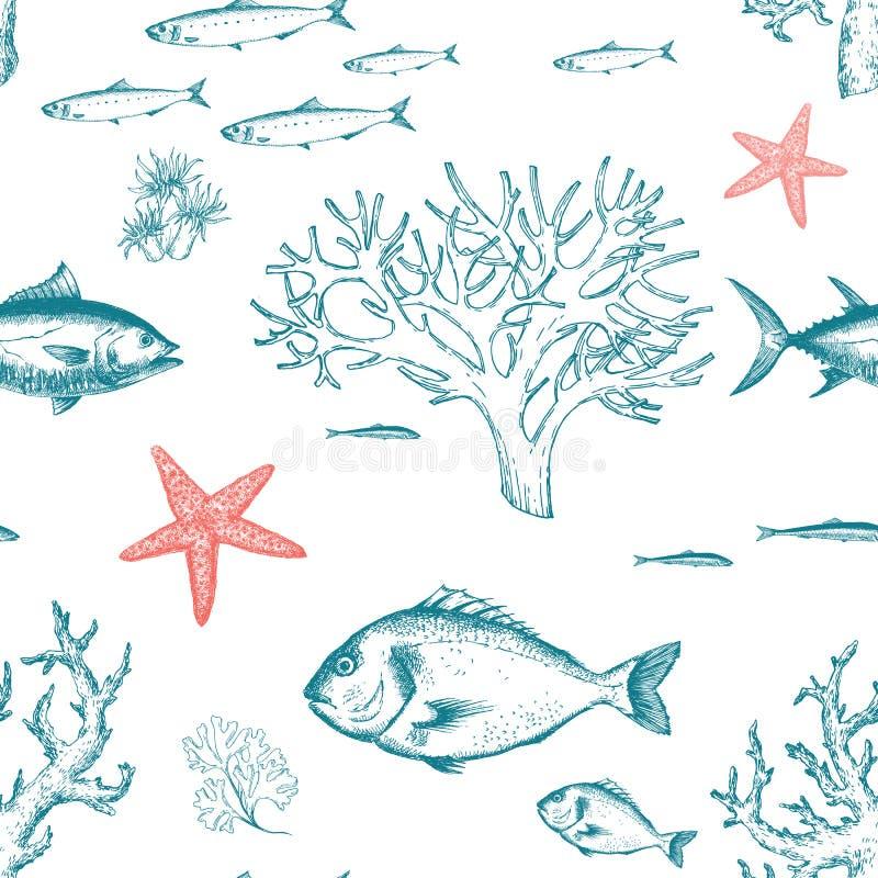 Teste padrão da vida marinha ilustração royalty free