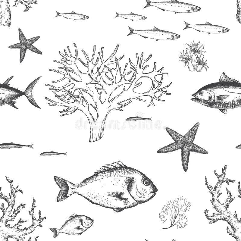 Teste padrão da vida marinha ilustração do vetor