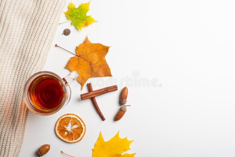 Teste padrão das folhas de outono com uma xícara de café ou chá em um fundo branco o plano coloca com espaço, arte imagens de stock royalty free