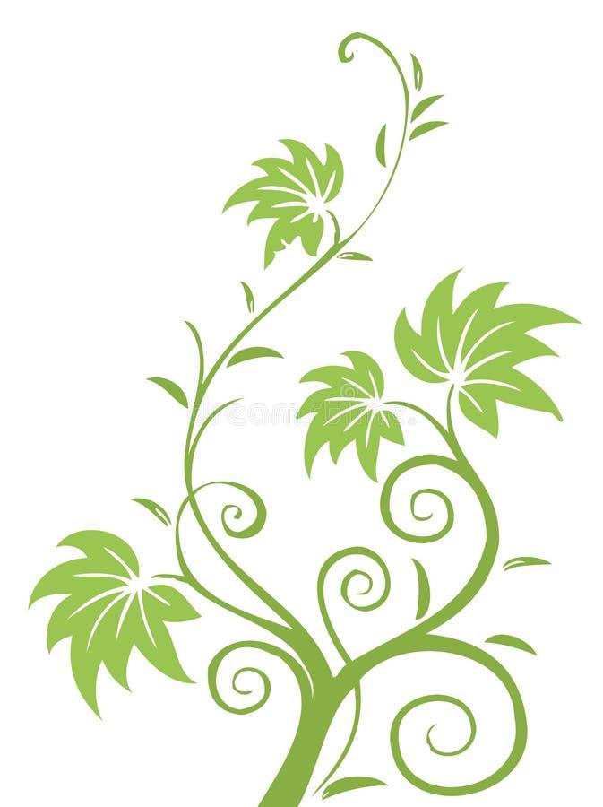 Teste padrão das folhas e das videiras do verde ilustração royalty free