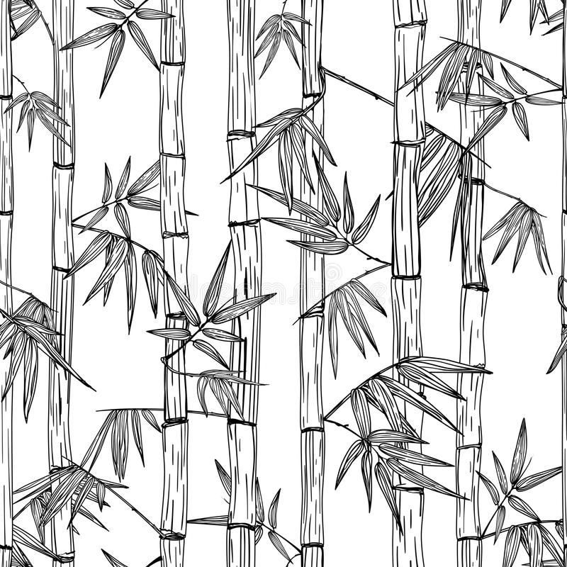 Teste padrão de bambu sem emenda da floresta do vetor Projeto para a cópia de matéria têxtil, termas asiáticos, massagem, cosméti ilustração royalty free