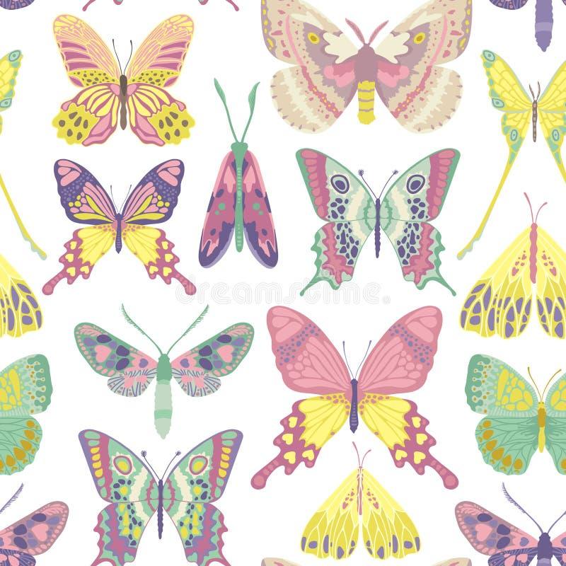 Teste padrão de borboleta do vetor ilustração royalty free