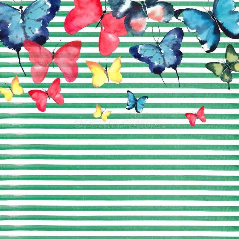 Teste padrão de borboletas colorido da mola delicada macia maravilhosa magnífica sofisticada bonito bonita no fundo das linhas ve ilustração stock
