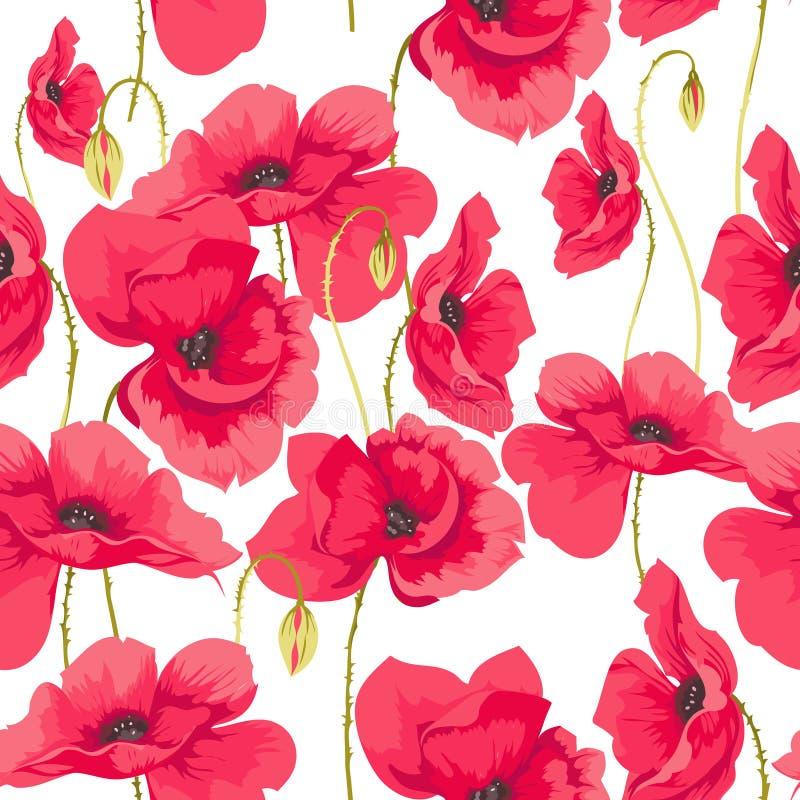 Teste padrão de flores da papoila ilustração royalty free