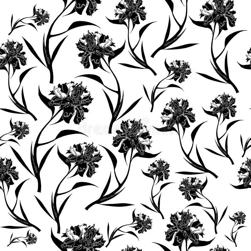Teste padrão de flores preto da peônia no fundo branco Ilustra??o do vetor ilustração do vetor