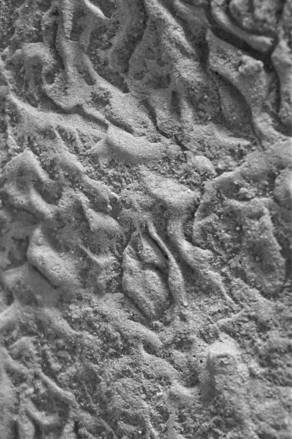 Teste padrão de fluxo textured preto e branco na rocha imagens de stock royalty free