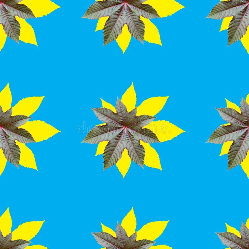 Teste padrão de repetição sem emenda do amarelo communis do ricinus com cor azul fotos de stock royalty free
