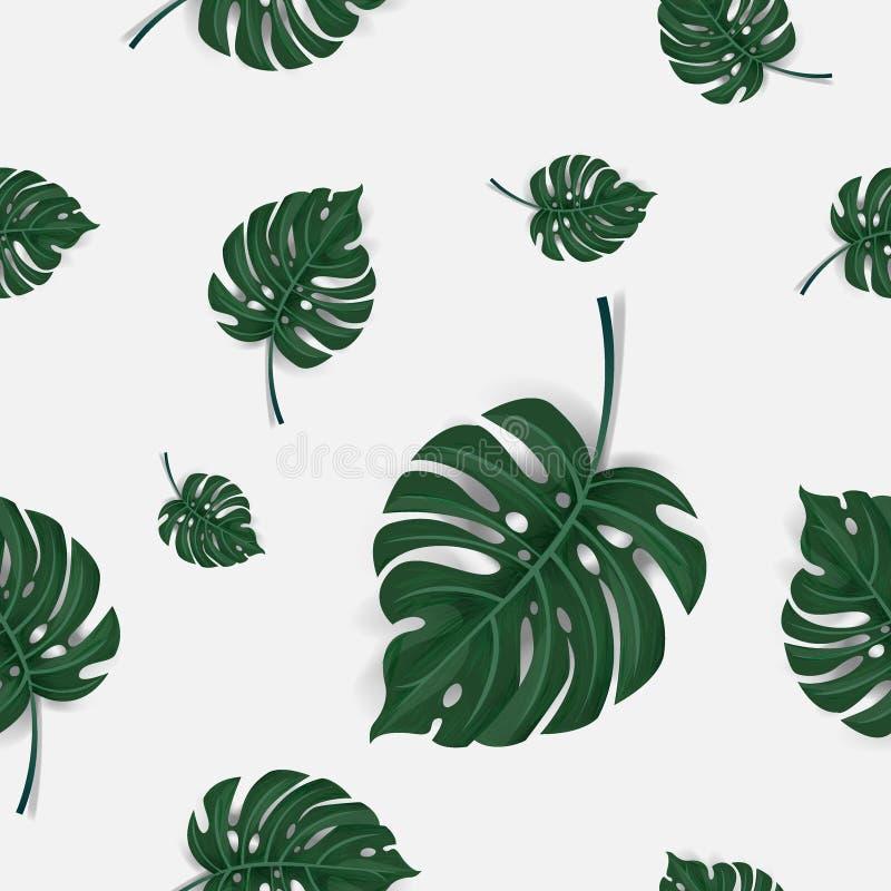 Teste padrão de sem emenda verde das folhas de palmeira isolado no fundo branco, vetor ilustração royalty free