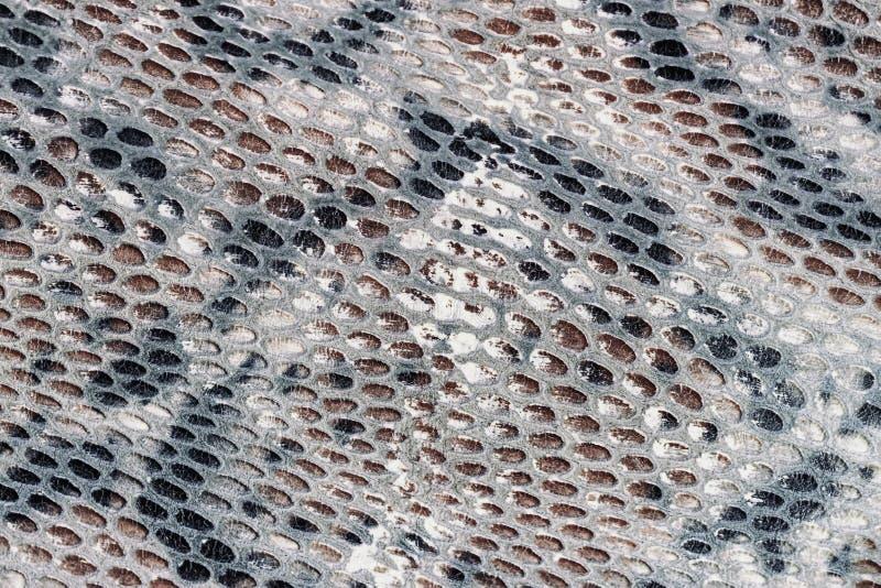 Teste padrão de Snakeskin no close-up de couro genuíno, imitação do réptil exótico, superfície da cor cinzenta marrom, na moda imagem de stock royalty free