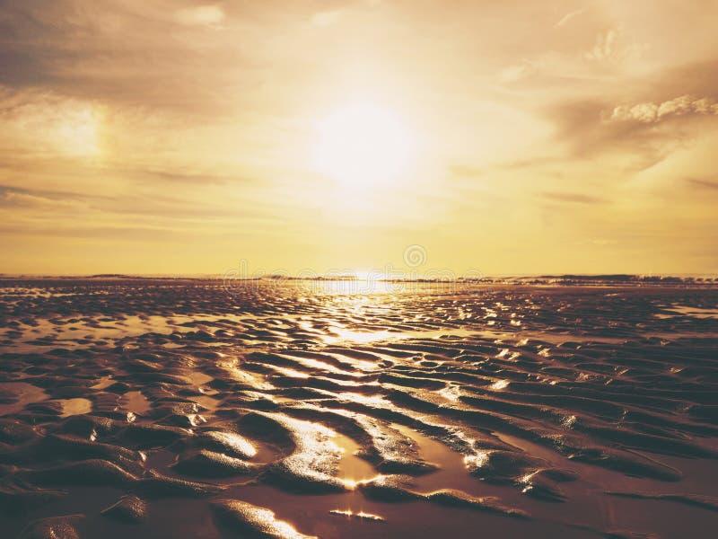Teste padrão de superfície das ondinhas douradas da areia na praia do por do sol foto de stock
