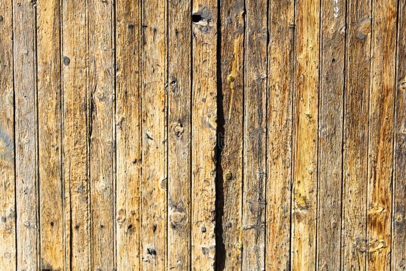 Teste padrão de superfície de madeira Grey Cracked Abstract Hardwood do detalhe antigo da porta fotos de stock royalty free