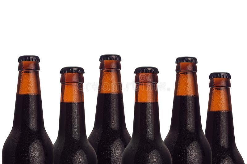 Teste padrão decorativo de garrafas de cerveja do marrom selado com gotas do porteiro e da água no fundo branco fotografia de stock