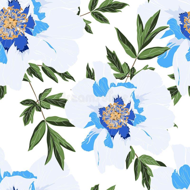 Teste padrão delicado do jardim das férias de verão de flores da peônia Rosas, peônia, anêmonas e eucalipto, planta carnuda ilustração stock