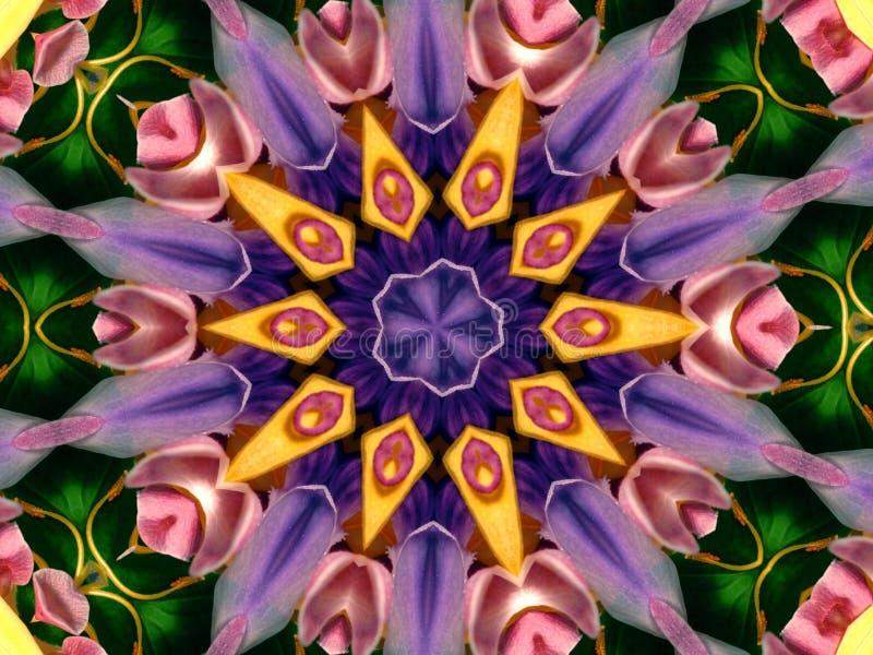 Teste padrão do caleidoscópio da flor ilustração royalty free