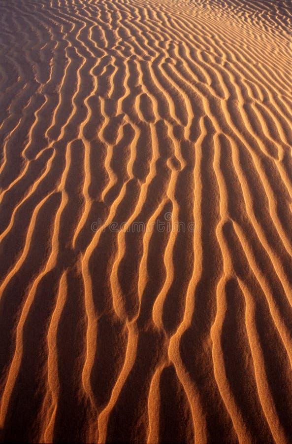 Teste padrão do deserto imagens de stock
