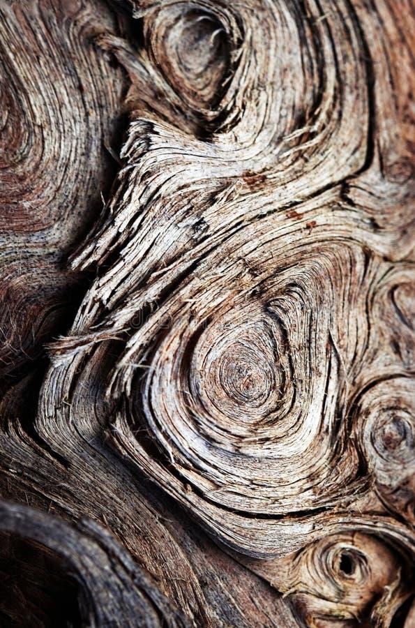 Teste padrão do redemoinho na madeira velha imagens de stock