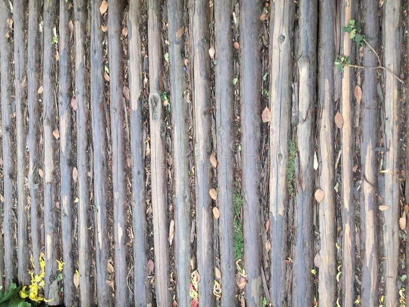 Teste padrão do sumário do paver do jardim foto de stock