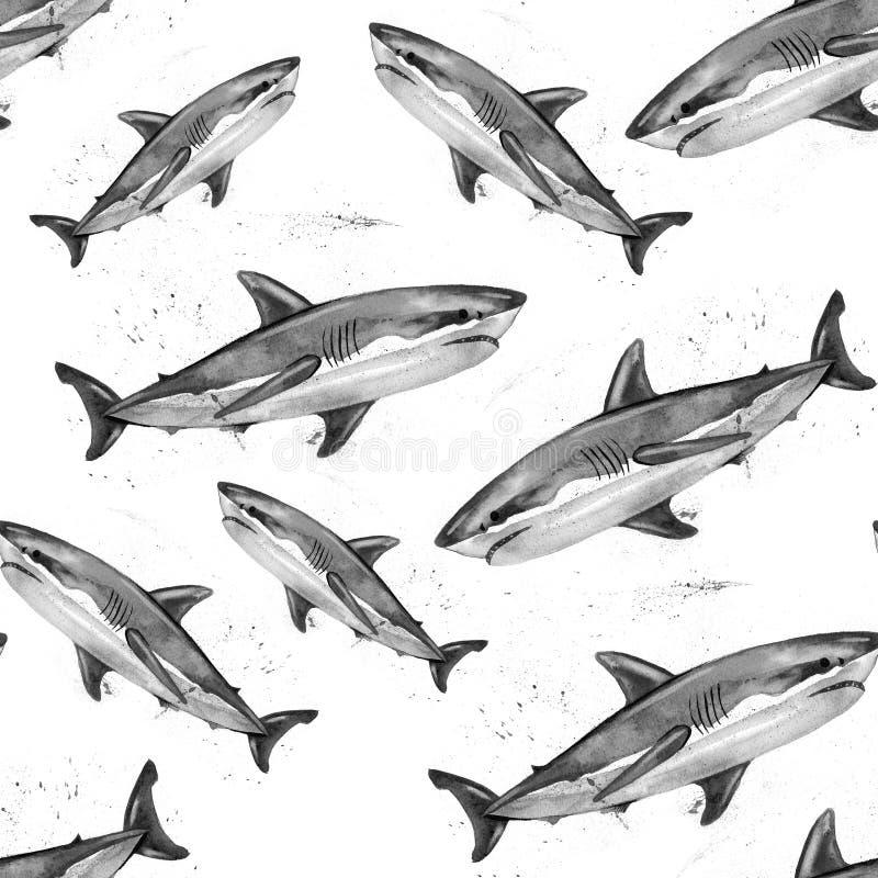 Teste padrão do tubarão branco da aquarela grande ilustração do vetor