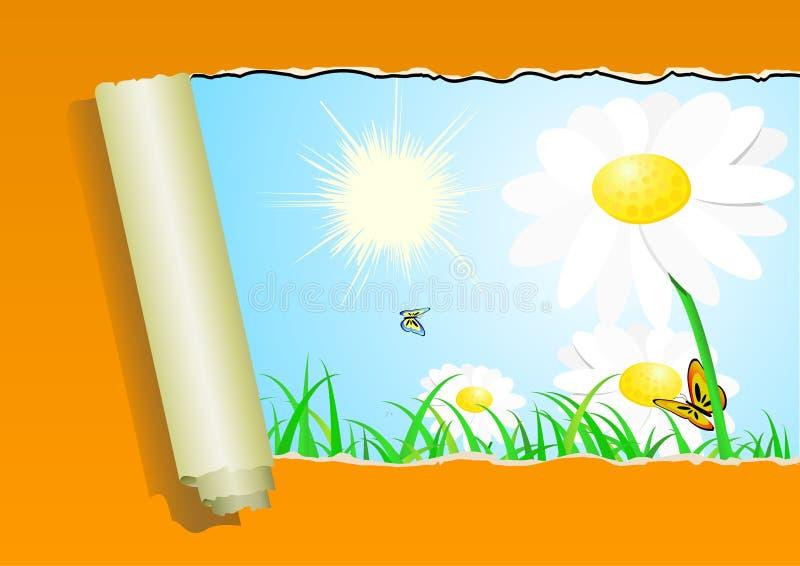 Download Teste padrão do verão ilustração do vetor. Ilustração de papel - 10056831