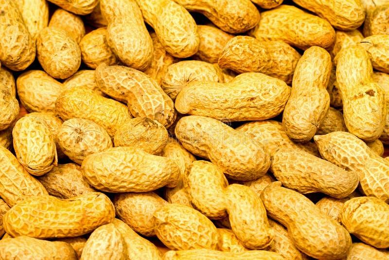 Teste padrão dos amendoins fotografia de stock royalty free