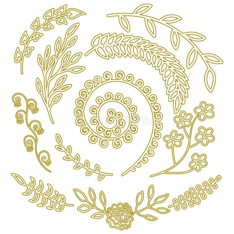 Teste padrão dos elementos da natureza para ervas selvagens tiradas do jardim dos elementos florais do convite do casamento mão r ilustração do vetor