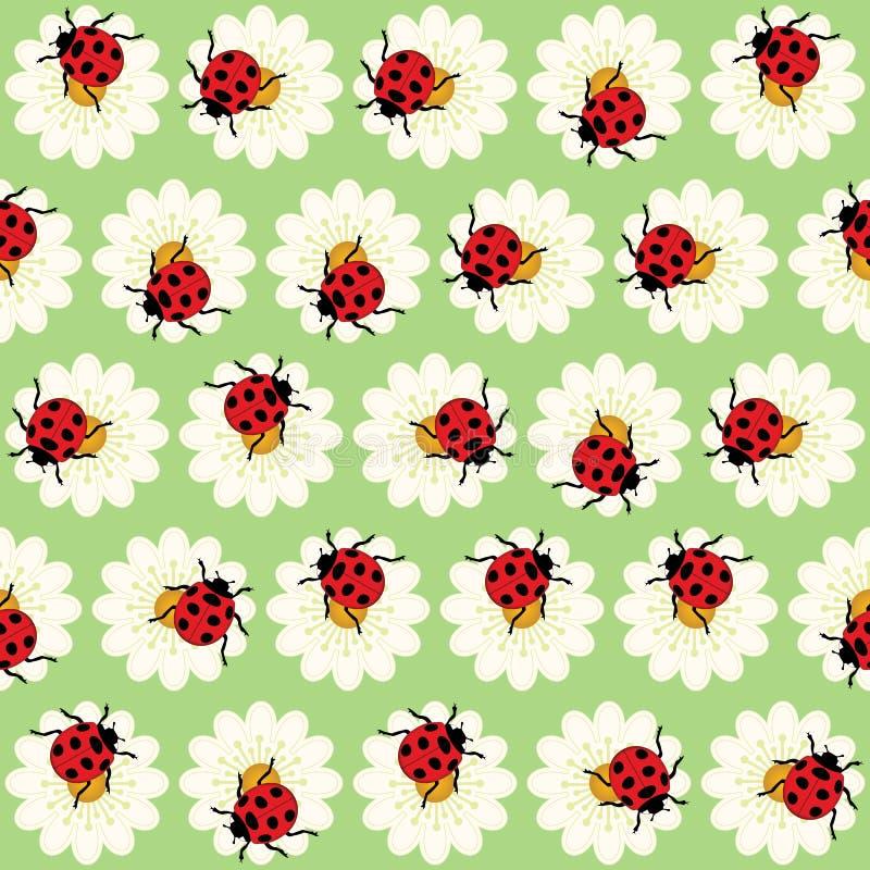 Teste padrão dos joaninhas e das margaridas ilustração stock