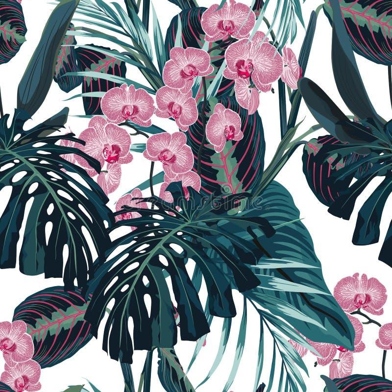 Teste padrão, escuros sem emenda - folhas de palmeira das cores verdes e flores cor-de-rosa tropicais da orquídea no fundo branco ilustração stock