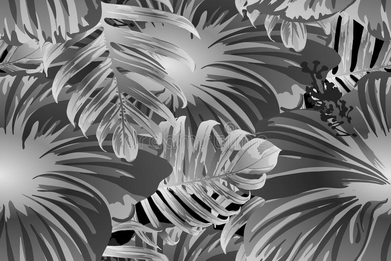 Teste padrão exótico branco preto ilustração stock