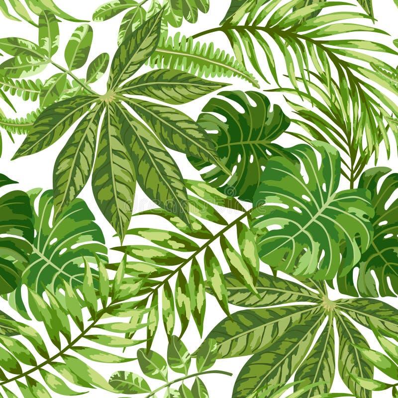 Teste padrão exótico sem emenda com folhas tropicais ilustração do vetor