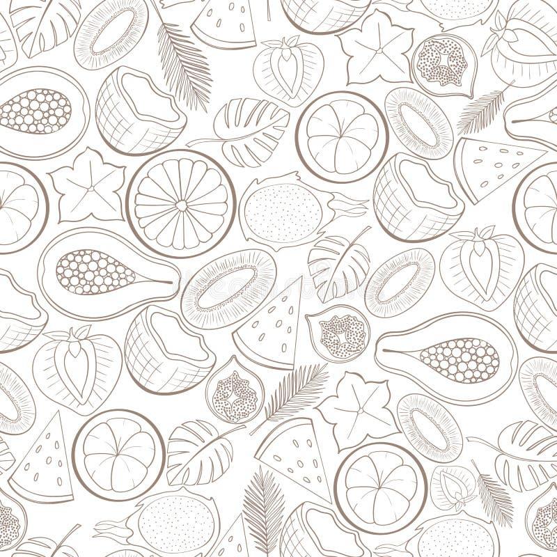 Teste padrão exótico sem emenda do fruto ilustração do vetor