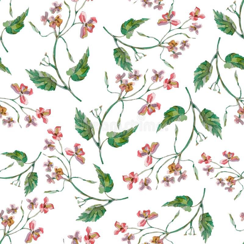 Teste padrão floral colorido com flores selvagens ilustração stock