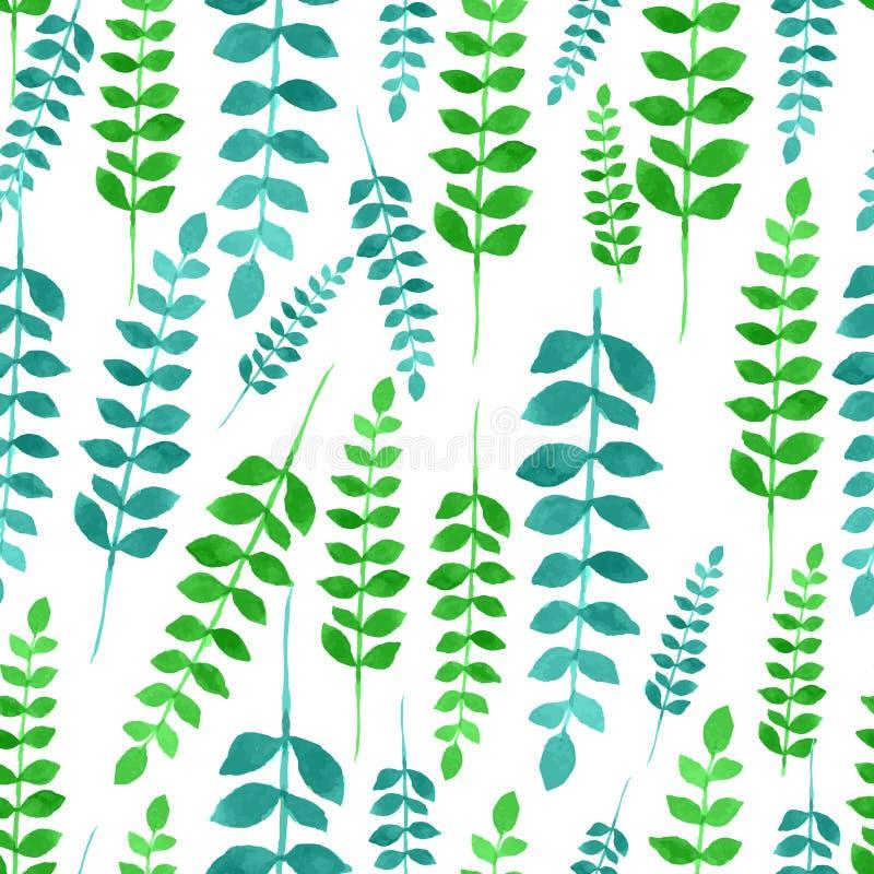 Teste padrão floral da aquarela sem emenda ilustração stock