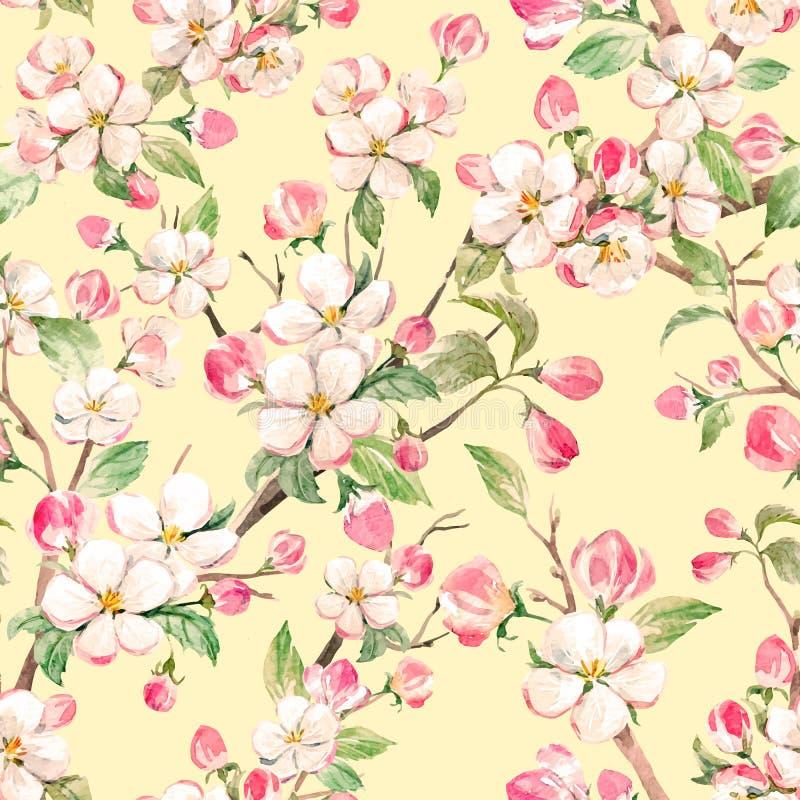 Teste padrão floral da mola do vetor da aquarela ilustração royalty free